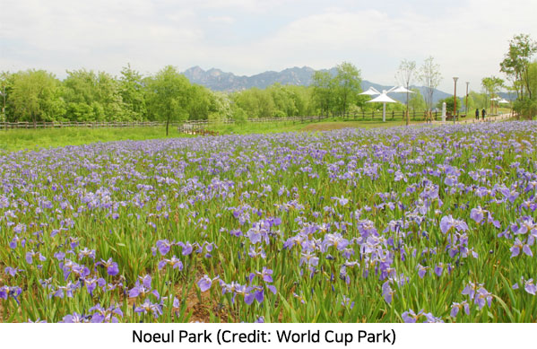 A Romantic Getaway, Noeul Park in World Cup Park